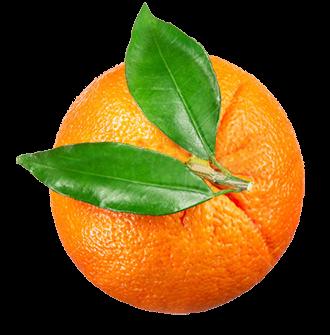 orange_330x335
